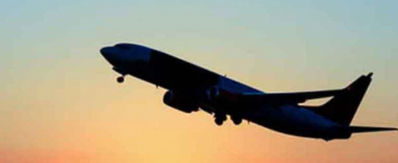 Another group of Sri Lankans repatriated