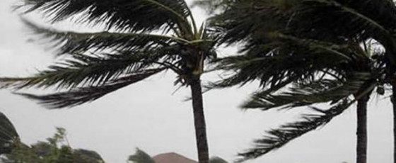 Raging winds damage over 480 houses in 10 Districts