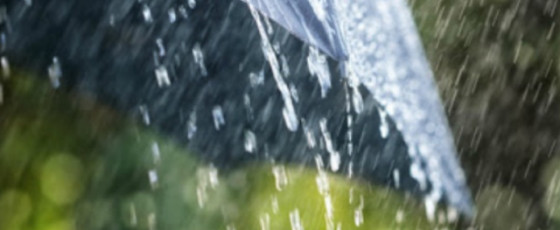 Weather: Heavy showers predicted