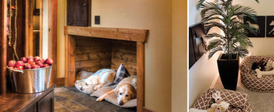 Pet-Friendly Ideas for Your Home
