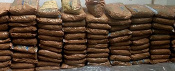 Over 200kg of Kerala Cannabis seized
