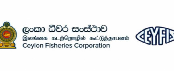 Fisheries Corporation to purchase accumulated fish stocks