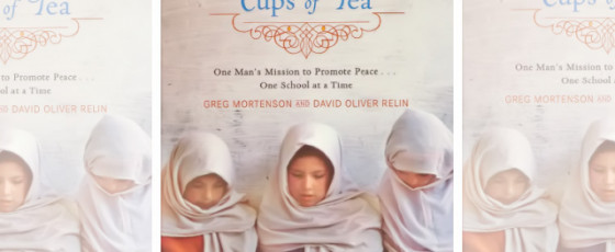 Book Review:  Three Cups of Tea