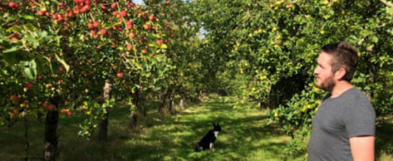 A Cider Tour of Herefordshire
