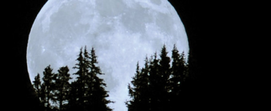 Astrological Facts About Moon