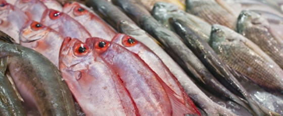 COVID-19 cannot spread through well-cooked fish – Dr. Sridharan