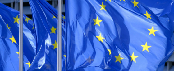 Import restrictions impair SL's efforts to become a regional hub: EU