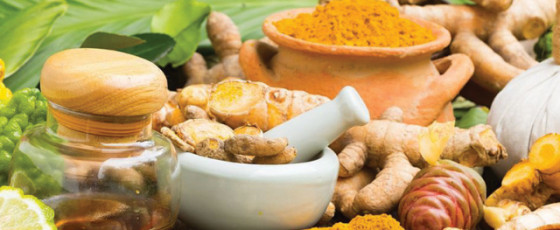 Special co-operative Ayurvedic hospital system to be established