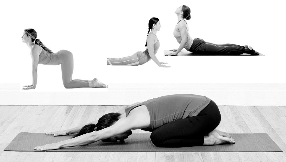 Yoga for the  Spine