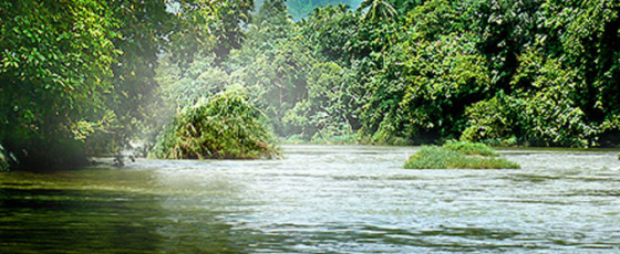 Three Ministries directed to stop pollution of Kelani River