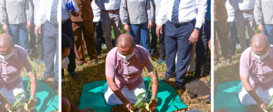 Collaborating with Environment Ministry to preserve highlands: Bogawantalawa Tea Estates showcases sustainability leadership