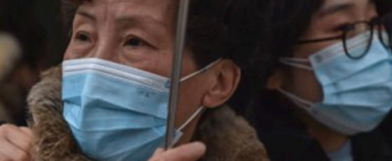 Covid: WHO team probing origin of virus arrives in China