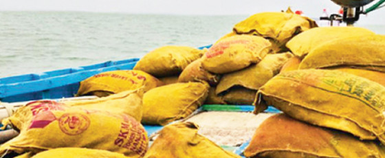Navy detects 8,769 kg of smuggled dried turmeric