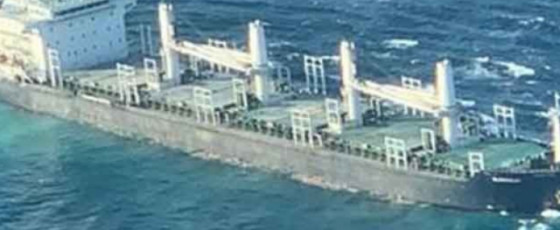 Forces deployed to monitor beached cargo ship