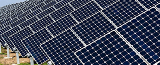 Setting up 20 new solar power plants: Procurement process complete – Dullas