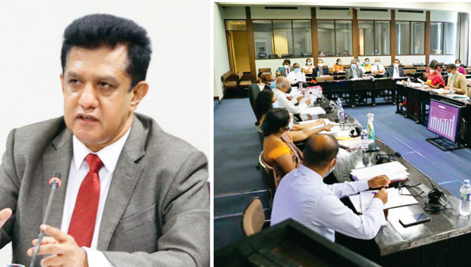 Human-elephant conflict resolution: COPA directs WFC to expedite process