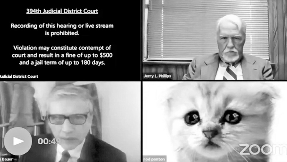 Lawyer Cat Filter Madness