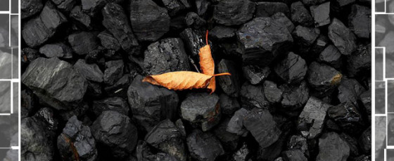 U.N. Urges Wealthy  Nations to Phase out Coal