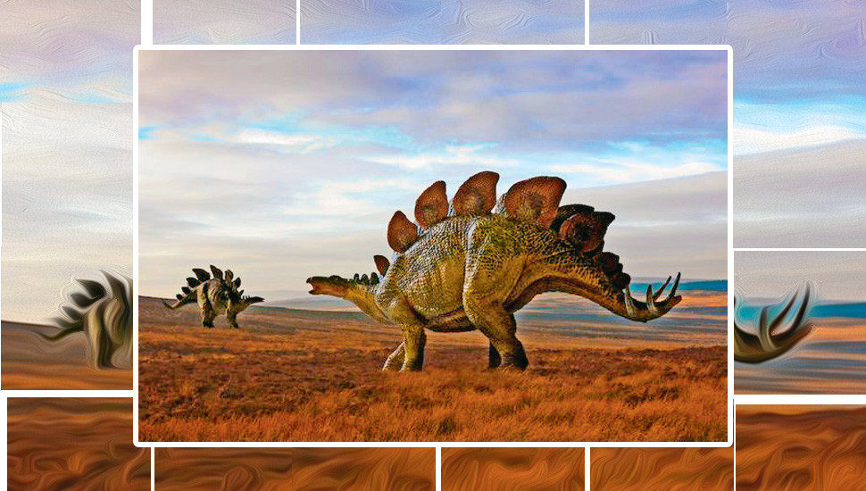 All About the Stegosaurus