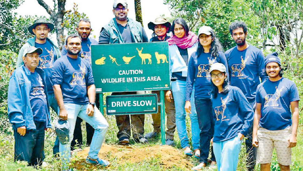 Little Steps towards  Conservation