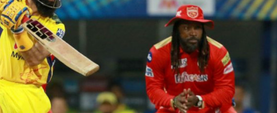 IPL : CSK beat PBK by six wickets