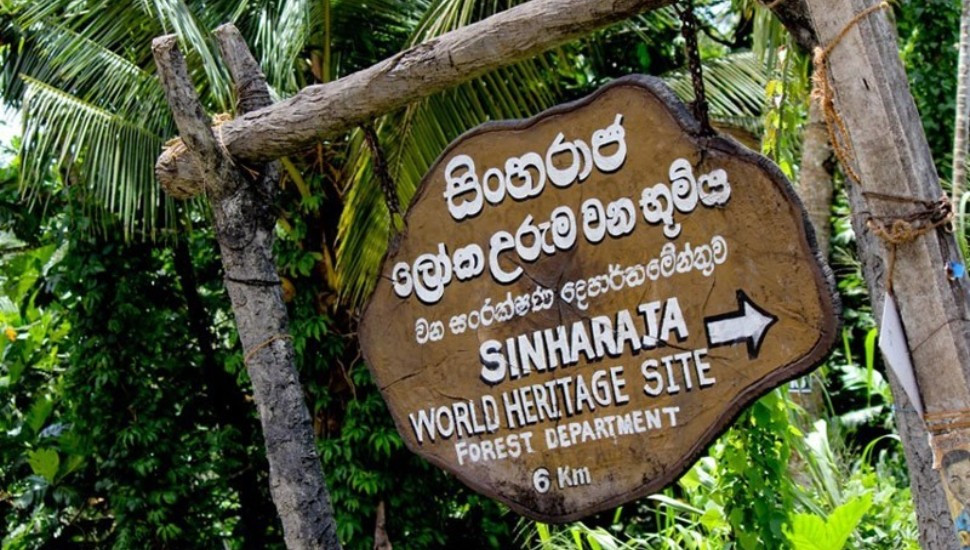 Forest Conservation Department addresses construction of Sinharaja hotel