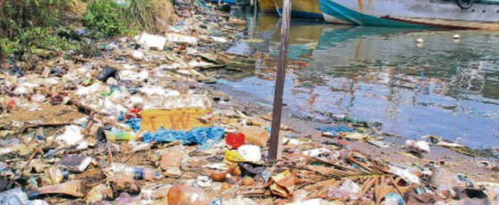 Pollution Sounds Death Knell for Negombo Lagoon