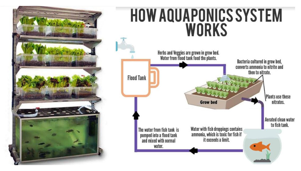 A Self-Sustaining System