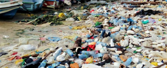 Plastic Waste:  Where Do We Put It All?