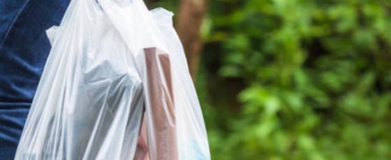 Polythene grocery bags to be banned from January 2022
