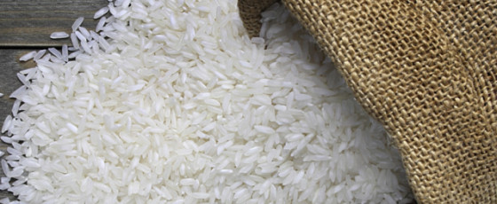 Rice prices could further decline – Gamlath