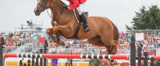 COVID delay helped our medal quest, say U.S. show jumpers