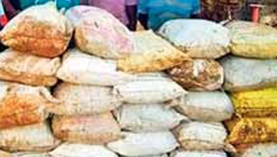 Navy seizes 3.7 tonnes of smuggled dried turmeric