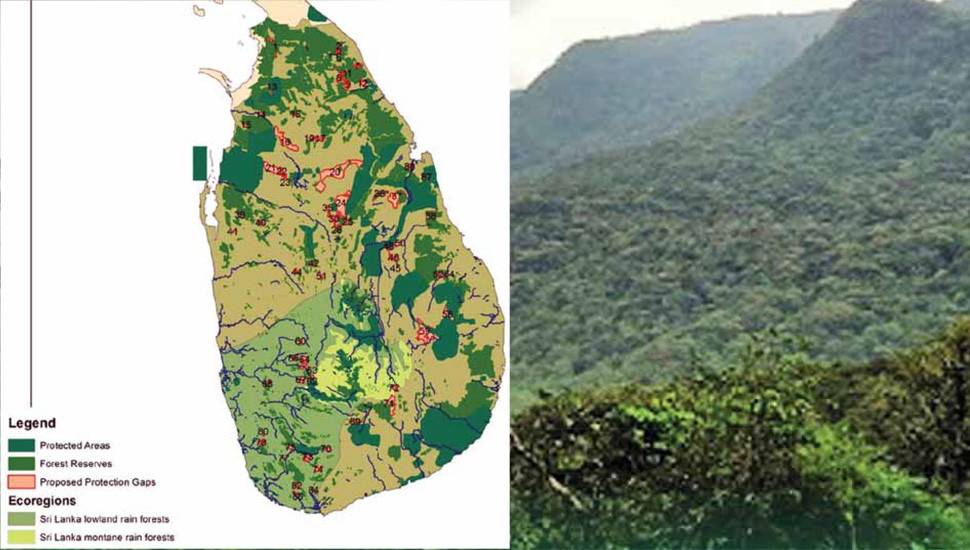 FSMP – a Strategy for Sustaining Our Forests