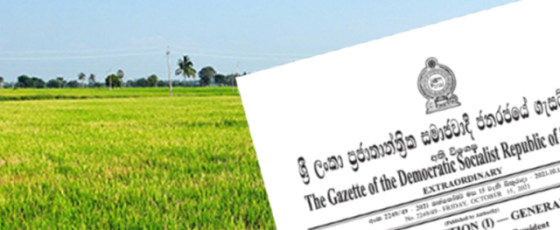 Presidential Task Force appointed for Green Agriculture