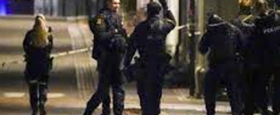 Man armed with bow and arrow kills five in Norway