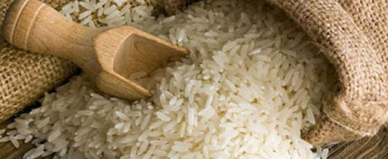 No loan for rice imports